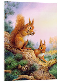 Quadro em acrílico  Pair of Red Squirrels on a Scottish Pine - Carl Donner