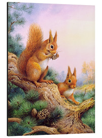 Quadro em alumínio  Pair of Red Squirrels on a Scottish Pine - Carl Donner