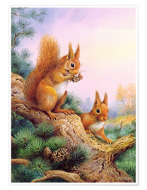 Póster Premium  Pair of Red Squirrels on a Scottish Pine - Carl Donner