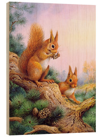 Quadro de madeira  Pair of Red Squirrels on a Scottish Pine - Carl Donner