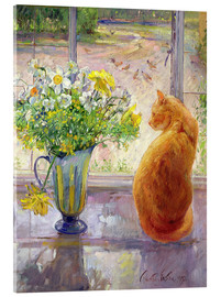 Quadro em acrílico  Cat with flowers in the window - Timothy Easton