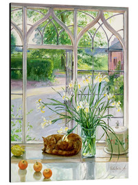 Quadro em alumínio  Sleeping cat in the window - Timothy Easton