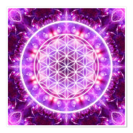 Póster Premium  Flower of Life, transformation - Dolphins DreamDesign