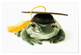 Póster Premium  Frog with completion hood - Darwin Wiggett