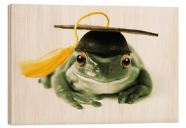 Quadro de madeira  Frog with completion hood - Darwin Wiggett