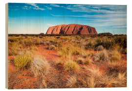 Quadro de madeira  Ayers Rock in the evening - Matteo Colombo