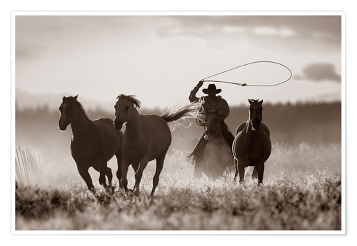 Póster Premium Cowboy of the horses catches