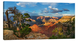 Quadro em tela  Grand Canyon with knotty pine - Michael Rucker