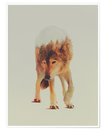 Póster Premium  Wolf in the Woods - Andreas Lie