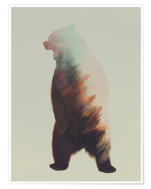 Póster Premium  Norwegian Woods The Bear - Andreas Lie