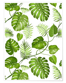 Póster Premium  Monstera and palms