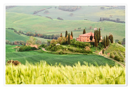 Póster Premium typical Tuscany landscape