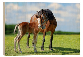Quadro de madeira  Mother Love - mare with foal