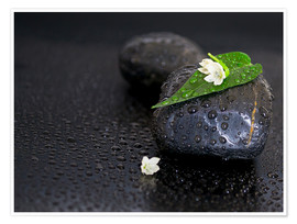 Póster Premium  Black stones with leaf