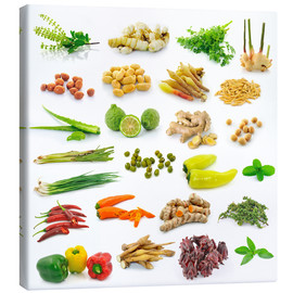Quadro em tela  Vegetable and herb collection