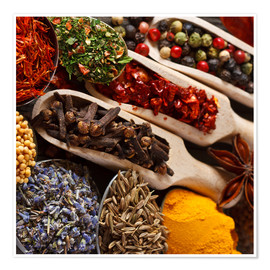 Póster Premium Colorful spices and herbs