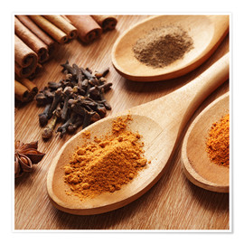Póster Premium Herbs and spices on wood