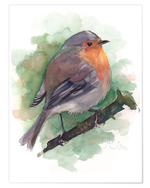 Póster Premium  Robin - Verbrugge Watercolor