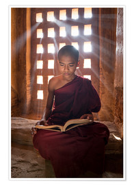 Póster Premium  Young Burmese monk in meditation at the monastery - Jan Christopher Becke