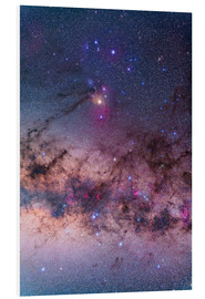 Quadro em PVC  Scorpius with parts of Lupus and Ara regions of the southern Milky Way. - Alan Dyer