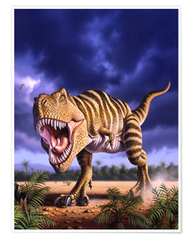 Póster Premium  A Tyrannosaurus Rex attacks, lit by the late afternoon sun. - Jerry LoFaro