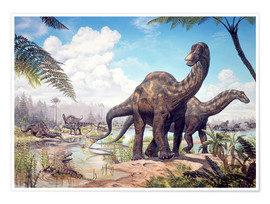 Póster Premium  Large Dicraeosaurus sauropods from the Late Cretaceous of Africa.. - Mark Hallett