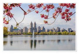 Póster Premium  Buildings reflected in lake with cherry flowers in spring, Central Park, New York, USA - Matteo Colombo