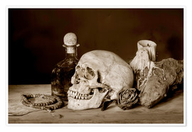 Póster Premium  Still Life - skull, ancient book, dry rose and candle