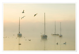 Póster Premium  A misty morning over Lake Windermere Lake District
