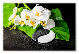 Póster Premium  White orchids and Yin-Yang stones