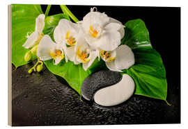 Quadro de madeira  White orchids and Yin-Yang stones