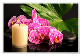 Póster Premium  Zen still life with orchids