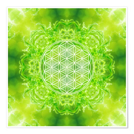 Póster Premium  Flower of Life - Healing Power of Nature - Dolphins DreamDesign