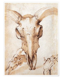 Póster Premium Skull of a cow