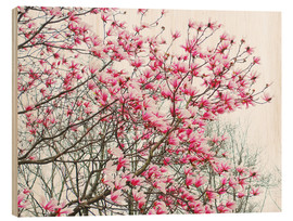 Quadro de madeira  Pink Blooming