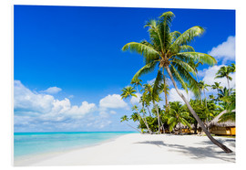 Quadro em PVC  Palm beach in the South Pacific with white sand and blue sea - Jan Christopher Becke