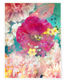 Póster Premium  Colorful flowers in the water - Alaya Gadeh