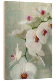 Quadro de madeira  Composition of a white orchid with transparent texture - Alaya Gadeh
