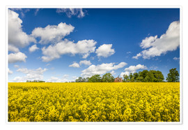 Póster Premium  Spring in yellow and blue on Bornholm - Christian Müringer