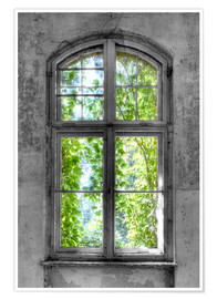 Póster Premium Window hope