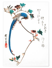 Póster Premium Blue magpie on maple branch