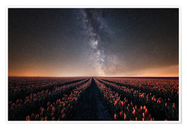 Póster Premium Tulip field and Milky Way