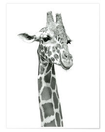 Póster Premium  Sketch Of A Smiling Giraffe - Ashley Verkamp