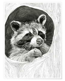 Póster Premium  Raccoon In A Hollow Tree Sketch - Ashley Verkamp