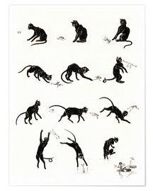 Póster Premium  The cat and the frog - Théophile-Alexandre Steinlen