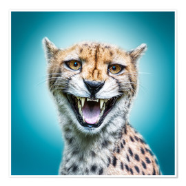 Póster Premium Funny Wild Faces Cheetah