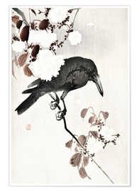 Póster Premium  Crow and Cherry Blossoms - Ohara Koson