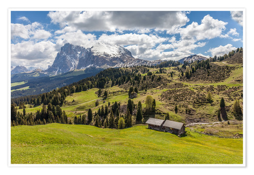 Póster Premium Summer on the Alpe di Siusi (South Tyrol, Italy)