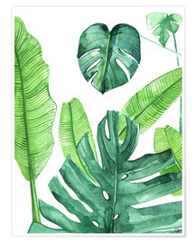 Póster Premium  Tropical leaves - Rongrong DeVoe