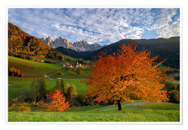 Póster Premium Funes Valley in autumn, Dolomites, South Tyrol, Italy